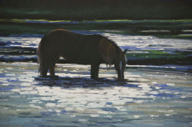 Sable Island 20 - Last Light of the Day